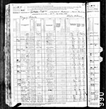 1880-KY Census, Spottsville, District 8, Henderson Co, KY